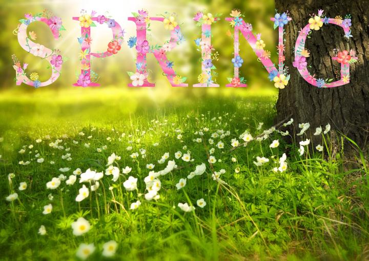 Spring Pictures – April 10